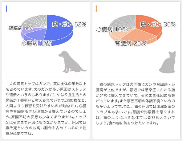 犬・猫がかかりやすい病気TOP10